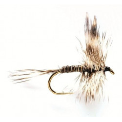 Dry fly - winged Dry flie mosquito 1750 ham 18