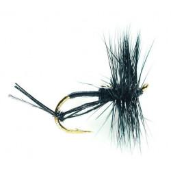 Aarde Vliegvissen . - terrestrials hawthorne 0515 ham 14