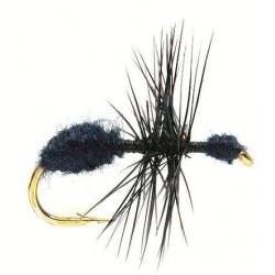 Mouche terre. - terrestrials Black ant 1736 ham 18
