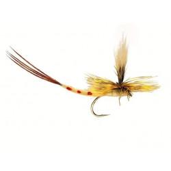 Kan Vliegvissen - eendagsvliegen eendagsvlieg 0700 ham 12