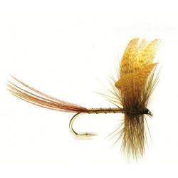 Fly may. - mayflies Green drake 0701 ham 10