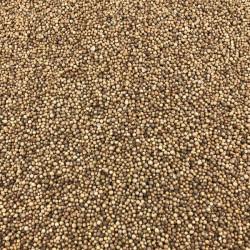 Coriander seed Deconinck