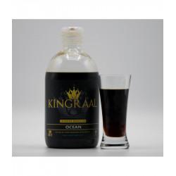 Kingraal Ocean Liquid Booster 500Ml