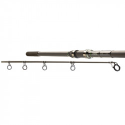 Canne carpe insedia 13ft 3,5lbs Prowess