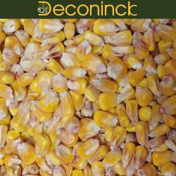 Mais carpe Deconinck