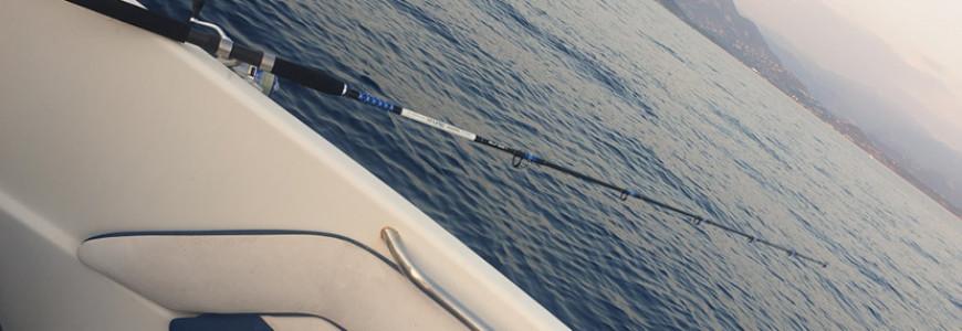 Les meilleurs cannes et articles de pêche en mer - Deconinck